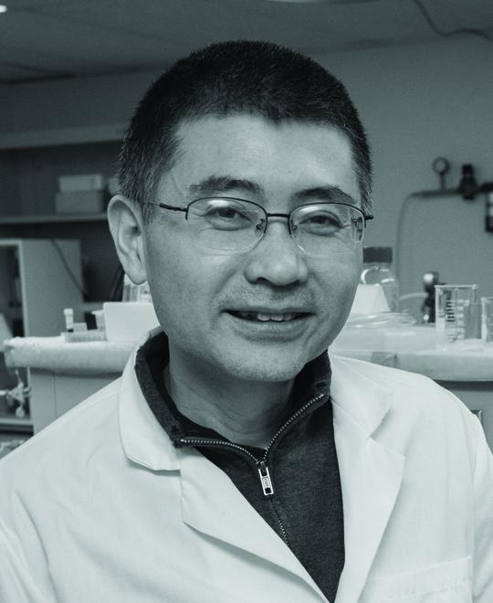 Photo of Yu Lei